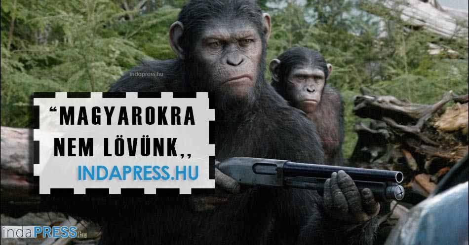 Számos magyar moziból tiltva a Majmok Bolygója Forradalom